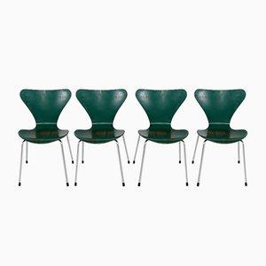 3107 Chairs Arne Jacobsen and Fritz Hansen, 1970s, Set of 4