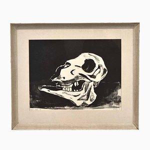 Sheep's Skull Print, 1964