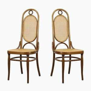 207R Dining Chairs from Thonet, 1970s, Set of 2