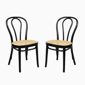 Antike schwarze 218 Stühle von Michael Thonet für Thonet, 2er Set