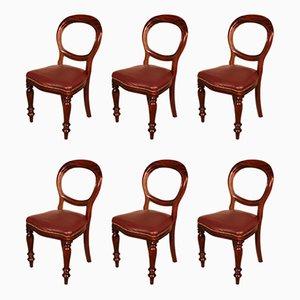 Antike Leder & Mahagoni Esszimmerstühle, spätes 19. Jahrhundert, 22er Set