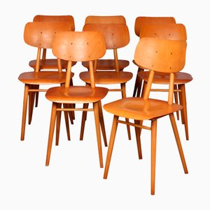 Wooden Dining Chairs from TON, 1960s, Set of 8