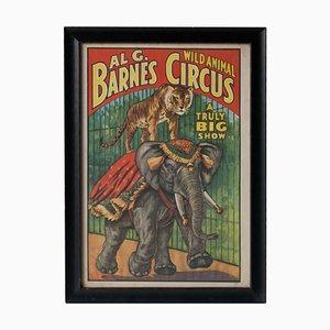 Poster AI G. Barnes, Affiche Animal Circus, 1895