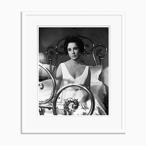 Cat On A Hot Tin Roof Archival Pigment Print Framed in White by Bettmann