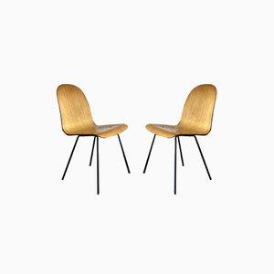 Geschwungene Esszimmerstühle aus Schichtholz, 1950er, 2er Set