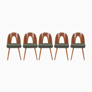 Dining Chairs by Antonín Šuman for Tatra, 1960s, Set of 5