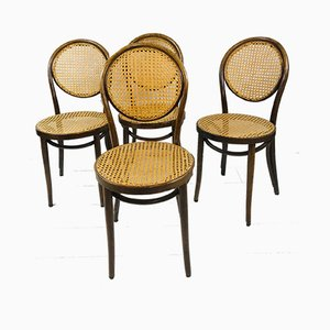 Mid-Century Bentwood & Rattan Bistro Chairs by Michael Thonet for Radomsko, 1960s, Set of 4