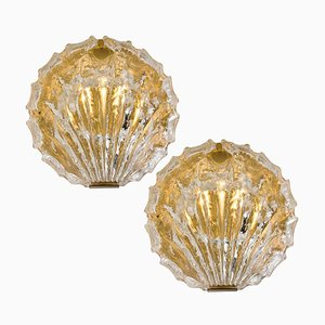 Golden Ice Glass Shell Sconces from Kalmar, 1960s, Set of 2