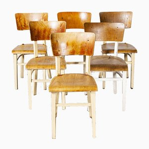 Bentwood Painted Dining Chairs from Ton, 1950s, Set of 6