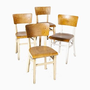 Bentwood Painted Dining Chairs from Ton, 1950s, Set of 4