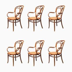 Wiener Esszimmerstühle aus Massivholz von Michael Thonet für Thonet, 1900er, 6er Set