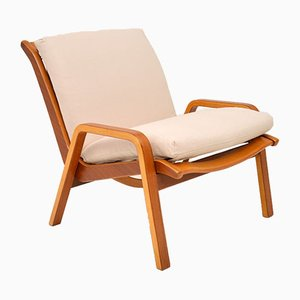 Vintage Dutch Armchair by Cees Braakman for Pastoe, 1960s
