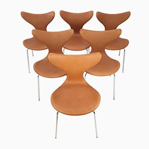 Lily Swivel Chairs by Arne Jacobsen for Fritz Hansen, 1960s, Set of 6