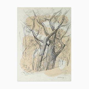 Serge Fontinsky, Tree Trunks, Ink, Mid-20th Century