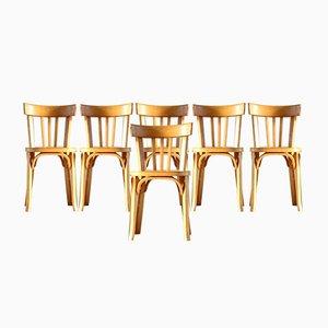 Esszimmerstühle von Baumann, 1950er, 6er Set