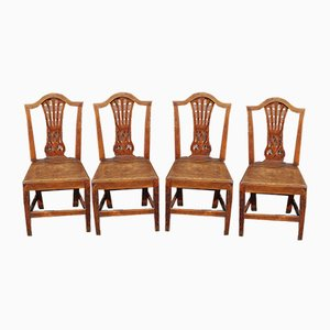 Antique Elm Dining Chairs, 1900s, Set of 4