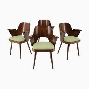 Esszimmerstühle von Oswald Haerdtl, Tschechoslowakei, 1960er, Set of 4
