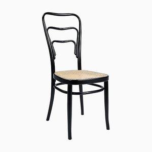 Vienna 144 Chair