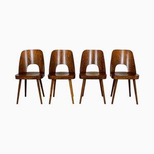 Nr. 515 Holz Esszimmerstühle von Oswald Haerdtl für TON, 1950er, 4er Set