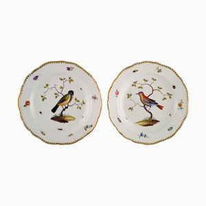 Antique Meissen Plates in Hand Painted Porcelain with Birds, 19th-Century, Set of 2