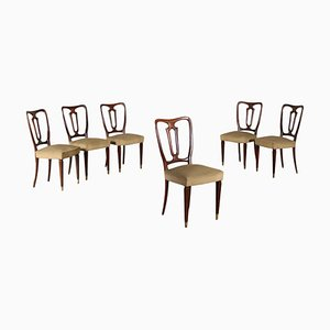Beech Chairs, 1950s, Set of 6