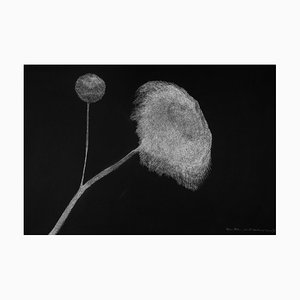 Secret Garden 12 by Alina Aldea