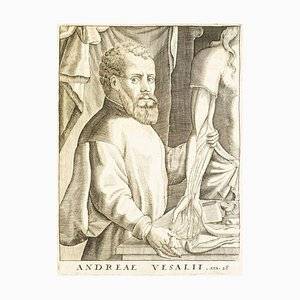 Vesalius - De Humani Corporis Fabrica - 1642