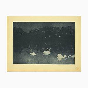 Francis Jourdain - Swans - Lithograph - 1898