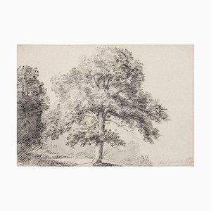 Jan Peter Verdussen - Paysage - Original Crayon et Encre Sur Papier - 18ème Siècle