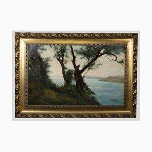 G. Villari - Flusslandschaft - Original Ölgemälde - Mitte 20. Jahrhundert
