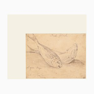 Jan Peter Verdussen - the Fish - Original Pencil On Paper - 1775 Ca.