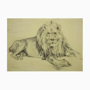 Wilhelm Lorenz, Lion, Dessin au Papier à Dessin, 1940s