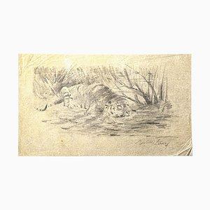 Stampa raffigurante Wilhelm Lorenz, tigre, matita, anni '50