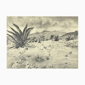 Unknown - Landscape with Agave - Original Drawing by Robert Block - 1970s