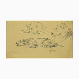 Disegno di Wilhelm Lorenz, bozzolo su carta, anni '40