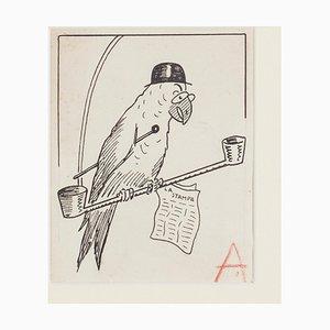 Bruno Angoletta, Papagei, China Tinte, Frühes 20. Jahrhundert