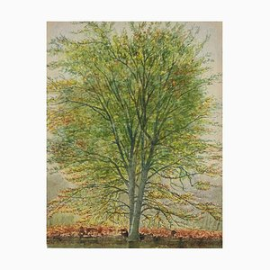 Unknown, Bäume, Aquarell, 1930er