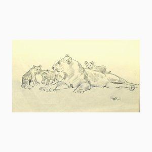 Willy Lorenz, Die Löwin und ihre Jungen, Bleistift auf Papier, Mitte 20. Jahrhundert
