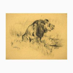 Wilhelm Lorenz, Lion, Dessin sur Papier, 1943