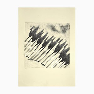 Tullio Diamanti, Shadow of Camels, Etching, 1980s