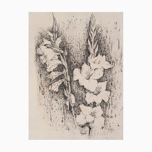 Linda Chittaro, Gladiolus, China Ink, 1956
