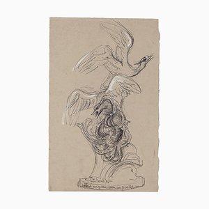 Inconnu - Mouette Attrapée par un Poulpe - Dessin Original - Milieu du 20ème Siècle