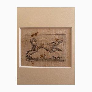 Juego de agua Antonio Tempesta - Perro - Aguafuerte, década de 1610