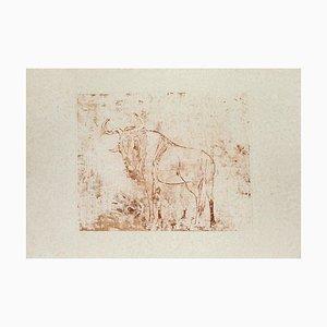 Aldo Pagliacci - Büffel - Radierung auf Papier - 1971