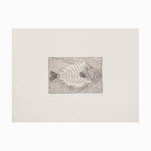 Massimo Baistrocchi - Fishbone - Radierung - 1972