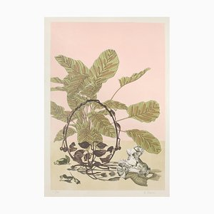 Unknown - Vegetation - Original Lithograph - 1980s