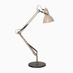 Desk Lamp from Napako