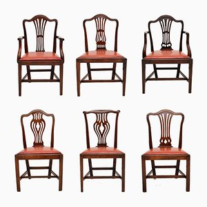 Antique Georgian Harlequin Dining Chairs, Set of 6
