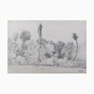 Marie Hector Yvert, Paysage Noir et Blanc, Crayon, 19ème Siècle