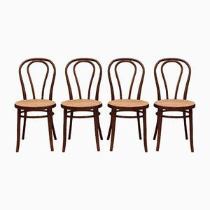 Romanian Bentwood No. 18 Dining Chairs by Gebrüder Thonet, 1960s, Set of 4